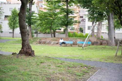 *yokotaro / PIXTA(ピクスタ)公園